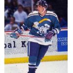 Mighty Ducks of Anaheim (1996) Temmu Selanne wearing Mighty Ducks of Anaheim alternate third uniform during 1995-96 season, nicknamed the Wild Wing jerseys