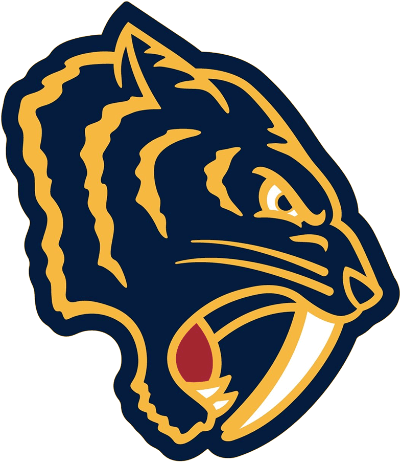 Nashville Predators Logo Special Event Logo (2019/20) - Nashville Predators 2020 Winter Classic shoulder logo, a retro-inspired fauxback version of their logo in blue and yellow with red SportsLogos.Net