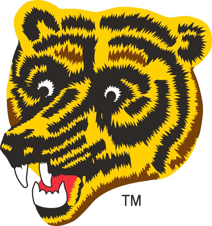 Boston Bruins Logo Alternate Logo (1976/77-1994/95) - Yellow bruin with black and brown zig zag stripes SportsLogos.Net
