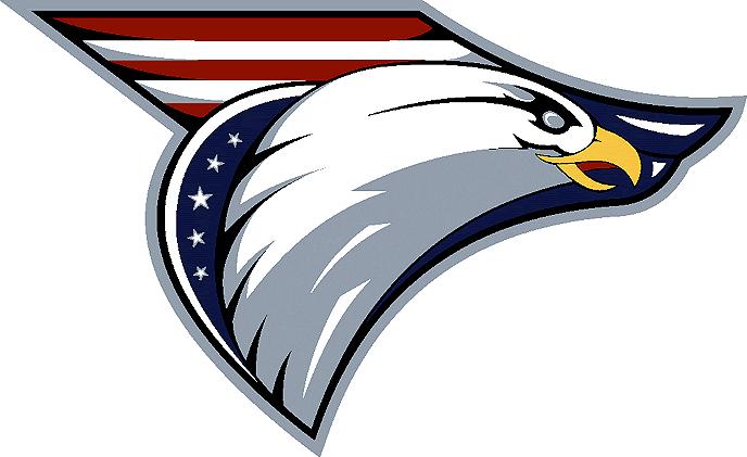 Washington Capitals Unused Logo - National Hockey League (NHL ... 41e039459