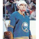 Buffalo Sabres (1978) Don Edwards wearing Buffalo Sabres road blue uniform during 1977/78 season