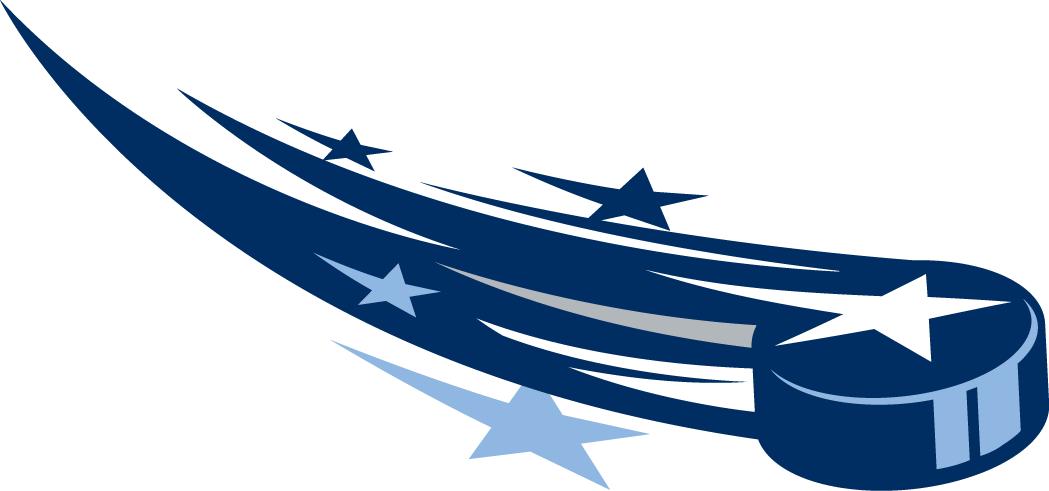 NHL All-Star Game Logo Alternate Logo (2014/15) -  SportsLogos.Net