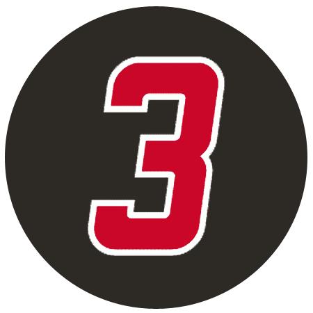 Carolina Hurricanes Logo Memorial Logo (1999/00) -  Steve Chiasson Memorial SportsLogos.Net