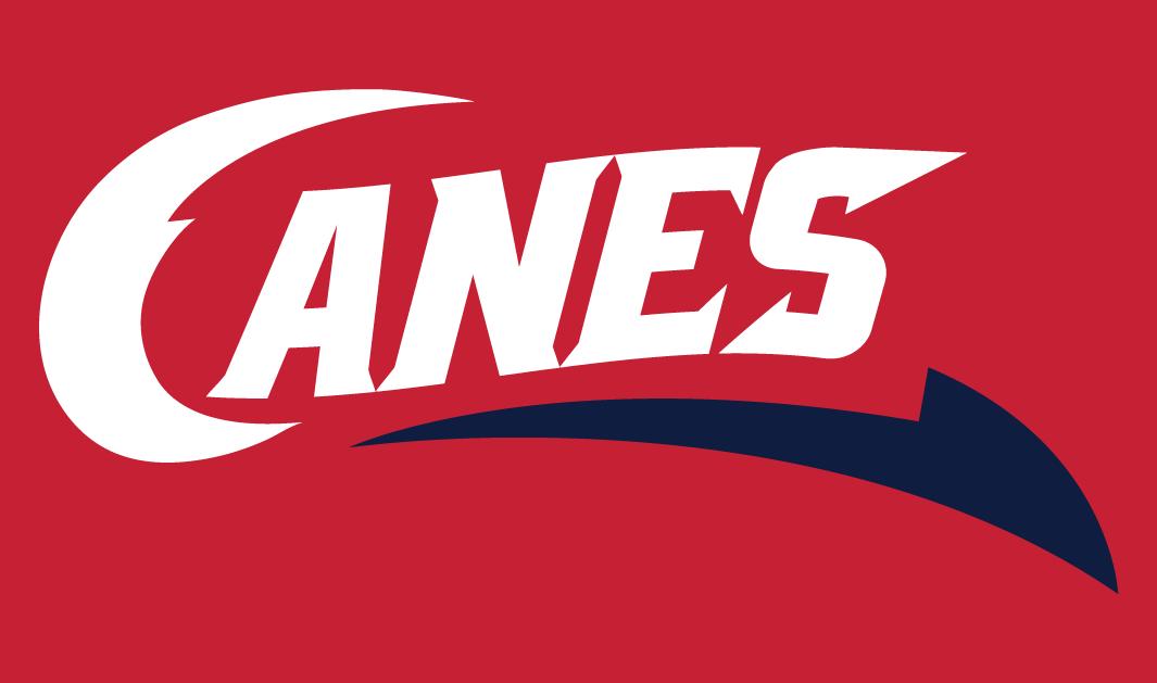 Lethbridge Hurricanes Logo Secondary Logo (2013/14-Pres) -  SportsLogos.Net