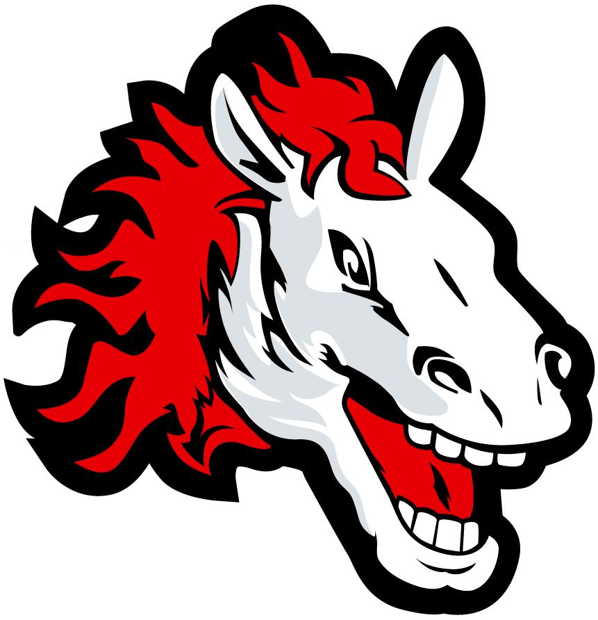 CSOB pojistovna Pardubice Logo Secondary Logo (2011/12-2014/15) -  SportsLogos.Net
