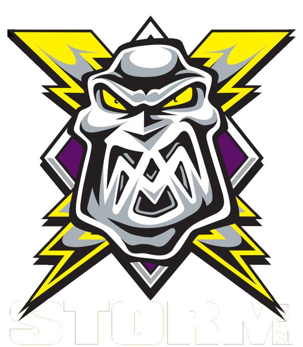 Manchester Storm Logo Primary Logo (2015/16-Pres) -  SportsLogos.Net