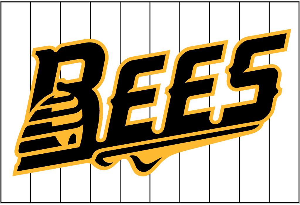 New Britain Bees Logo Jersey Logo (2016-Pres) -  SportsLogos.Net