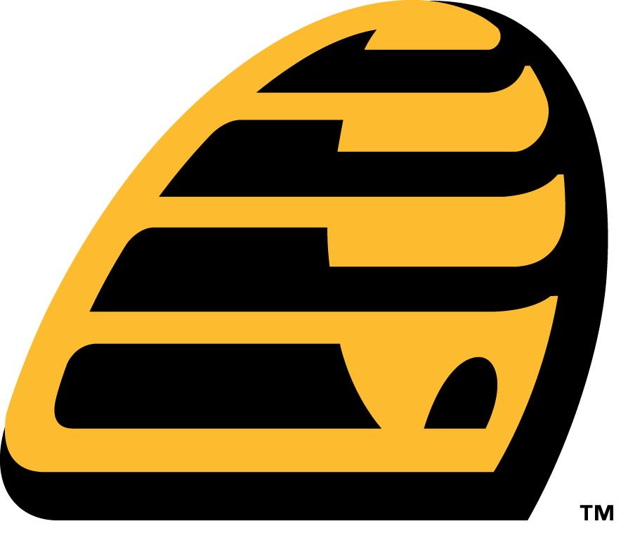 New Britain Bees Logo Alternate Logo (2016-Pres) -  SportsLogos.Net
