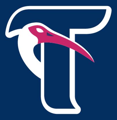 Tormenta FC Logo Alternate Logo (2016-Pres) -  SportsLogos.Net