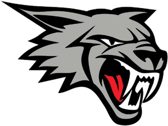 Brampton Beast Logo Alternate Logo (2019/20-Pres) -  SportsLogos.Net