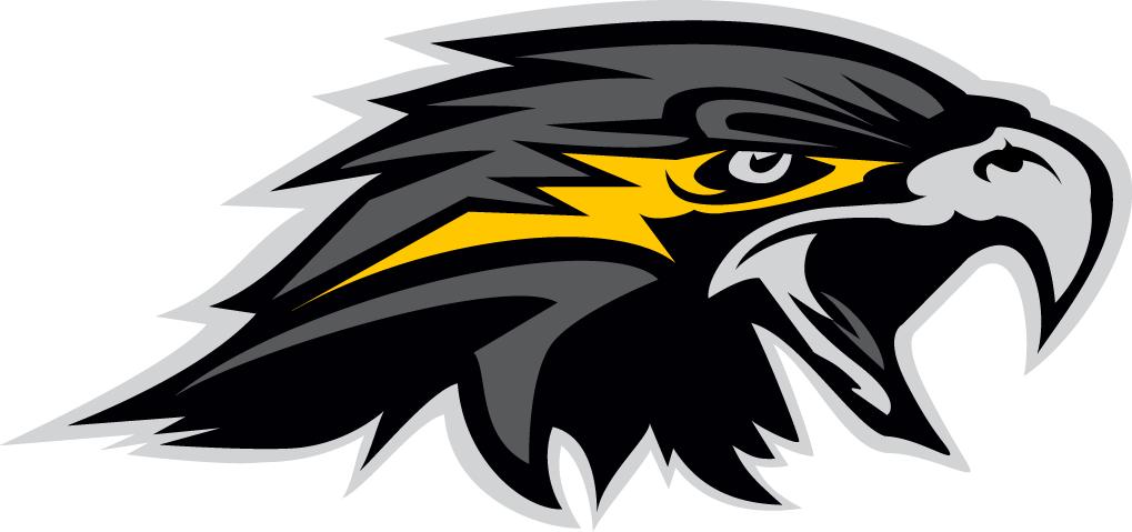 Wichita Falls Nighthawks Logo Secondary Logo (2015-Pres) -  SportsLogos.Net