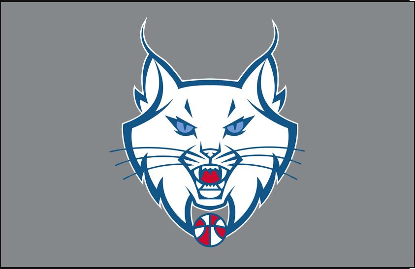 Minnesota Lynx Logo Alt on Dark Logo (2011-2017) - Partial on silver SportsLogos.Net