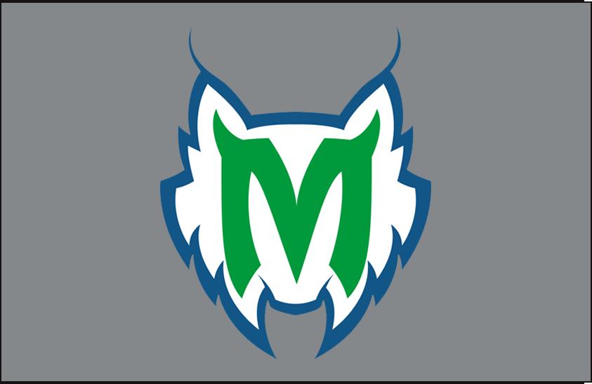 Minnesota Lynx Logo Alt on Dark Logo (1999-2017) - Alternate on silver SportsLogos.Net