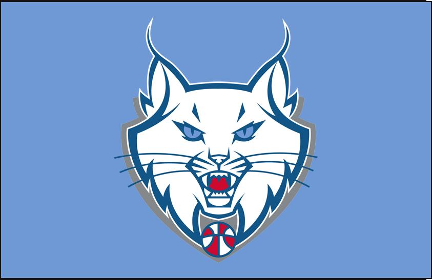 Minnesota Lynx Logo Alt on Dark Logo (2011-2017) - Partial on light blue SportsLogos.Net