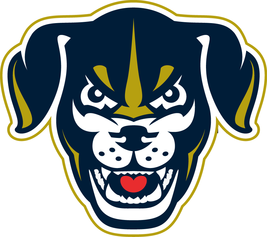 Lincoln Saltdogs Logo Secondary Logo (2017-Pres) -  SportsLogos.Net