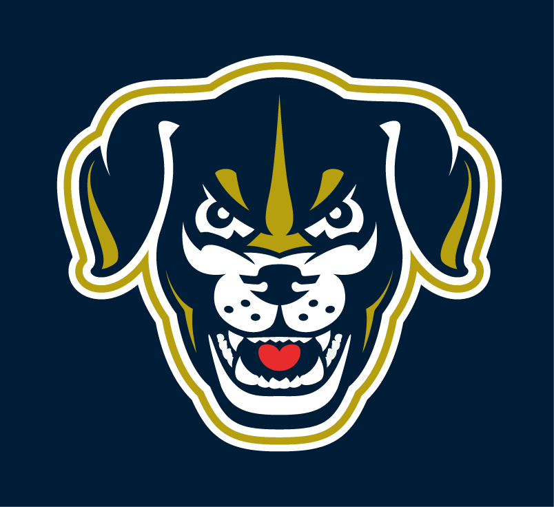 Lincoln Saltdogs Logo Cap Logo (2017-Pres) -  SportsLogos.Net