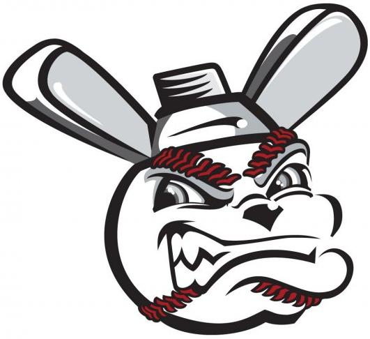Wichita Wingnuts Logo Secondary Logo (2008-2018) -  SportsLogos.Net