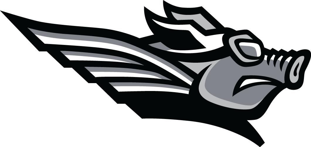 Texas AirHogs Logo Secondary Logo (2016-2020) -  SportsLogos.Net