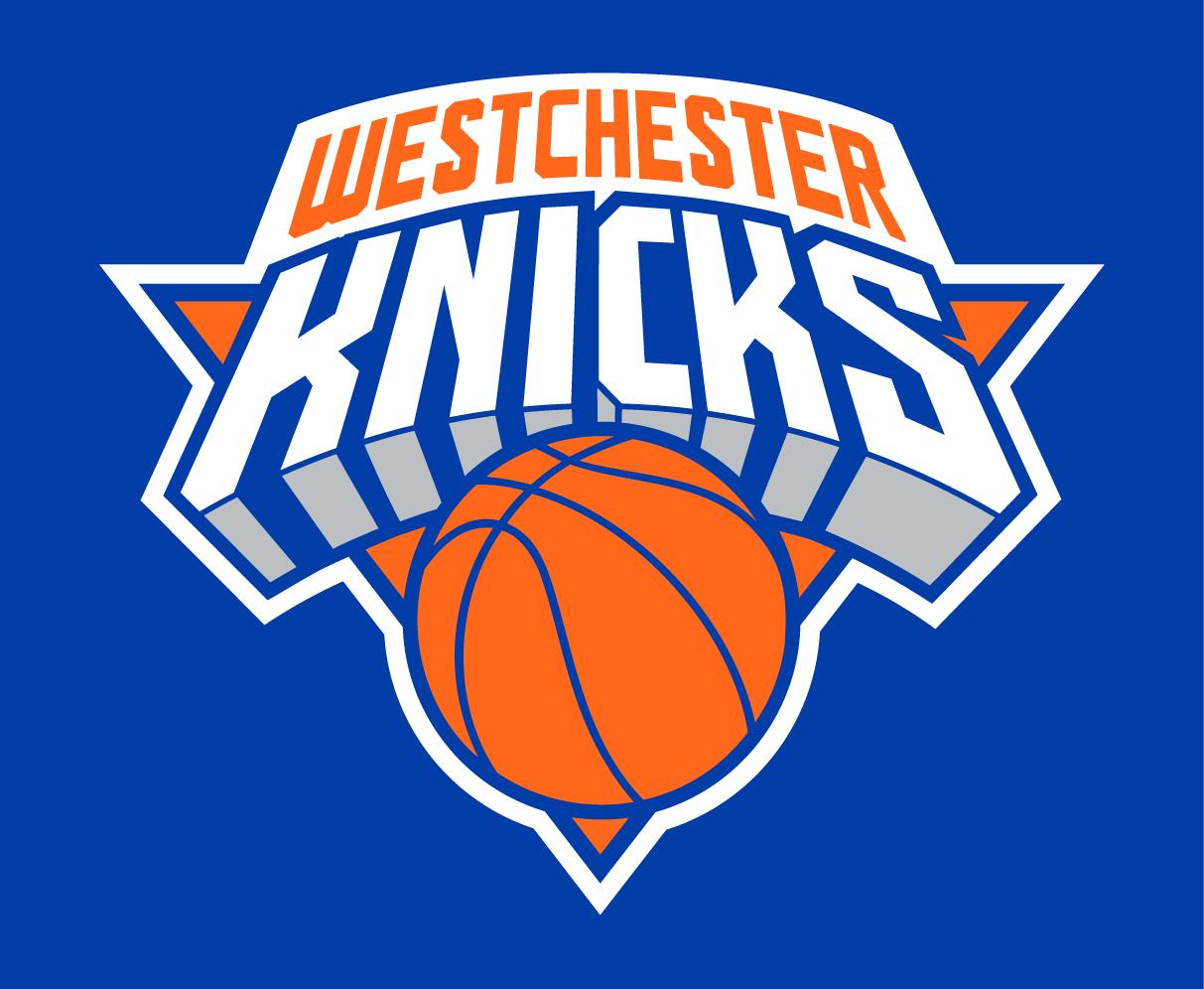 Westchester Knicks Logo Primary Dark Logo (2015/16-Pres) -  SportsLogos.Net