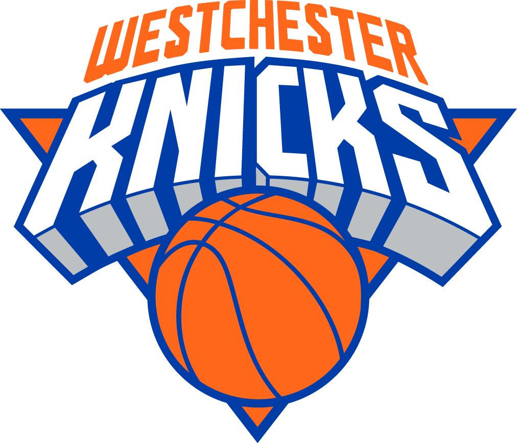 Westchester Knicks Logo Primary Logo (2015/16-Pres) -  SportsLogos.Net
