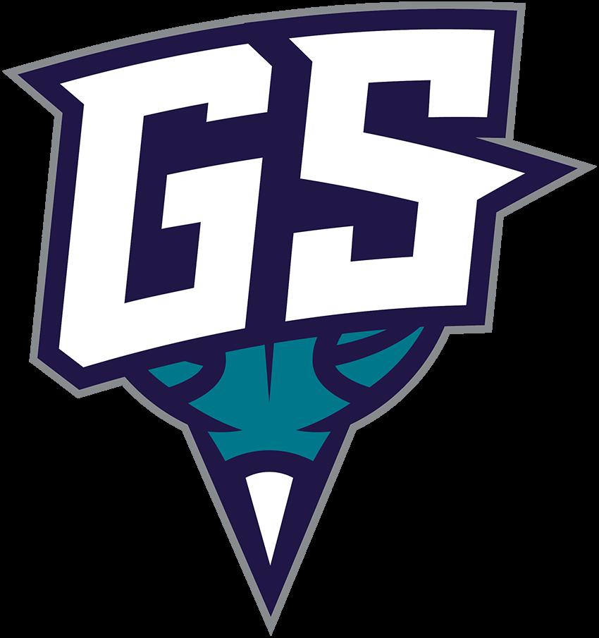 Greensboro Swarm Logo Secondary Logo (2016/17-Pres) -  SportsLogos.Net