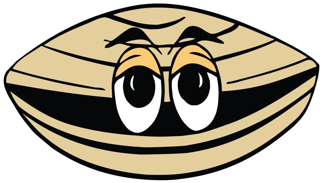 Edenton Steamers Logo Secondary Logo (1998-Pres) -  SportsLogos.Net
