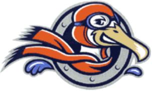 Peninsula Pilots Logo Partial Logo (2000-Pres) -  SportsLogos.Net