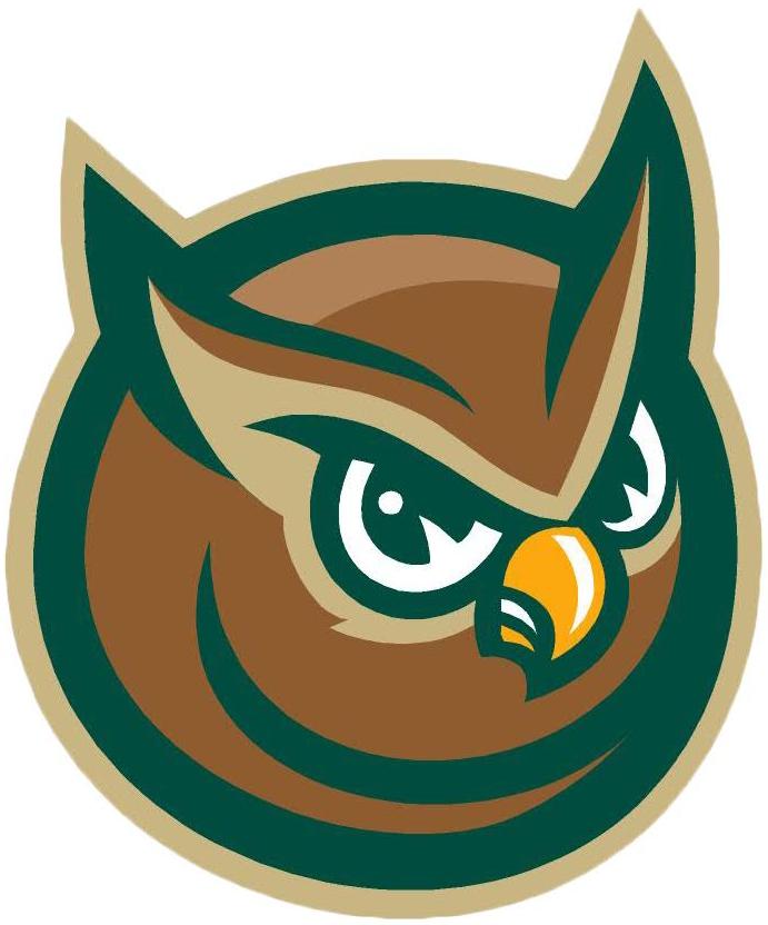 Forest City Owls Logo Alternate Logo (2008-Pres) -  SportsLogos.Net
