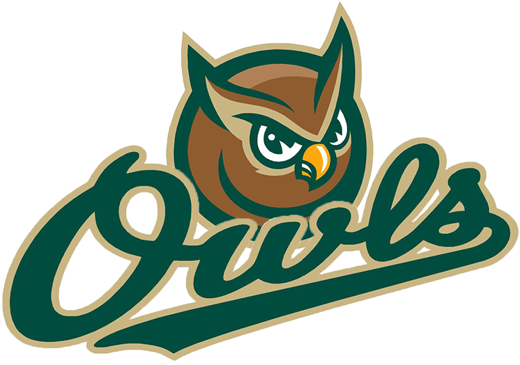 Forest City Owls Logo Secondary Logo (2008-Pres) -  SportsLogos.Net