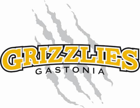 Gastonia Grizzlies Logo Primary Logo (2009-Pres) -  SportsLogos.Net