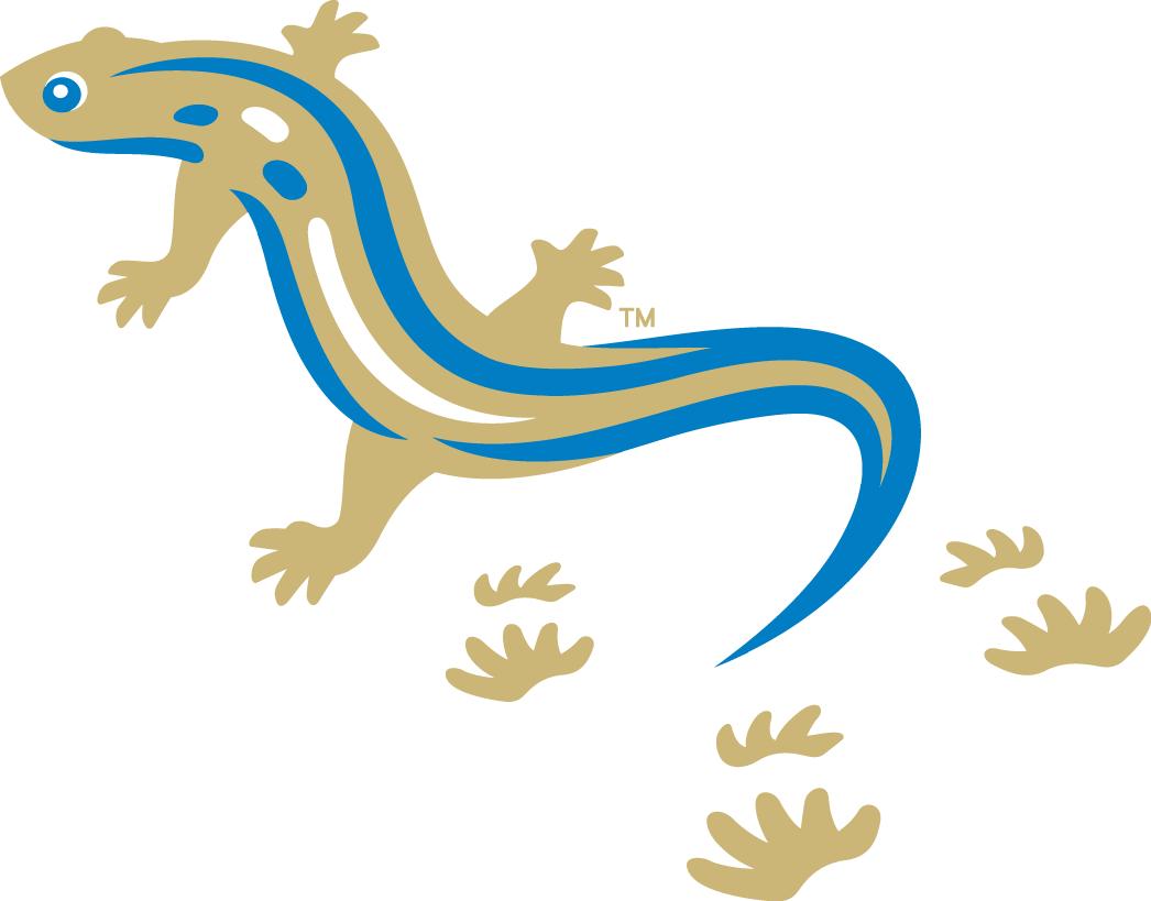 Holly Springs Salamanders Logo Secondary Logo (2015-Pres) -  SportsLogos.Net