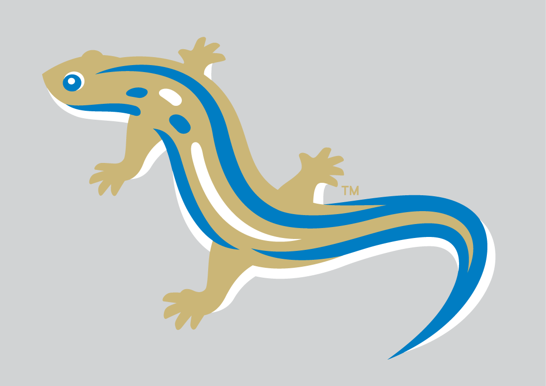 Holly Springs Salamanders Logo Alternate Logo (2015-Pres) -  SportsLogos.Net