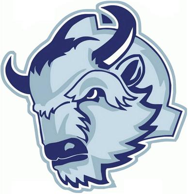 Dinamo-Shinnik  Logo Primary Logo (2009/10-Pres) -  SportsLogos.Net