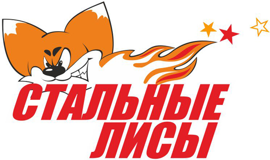 Stalnye  Lisy Logo Primary Logo (2009/10-Pres) -  SportsLogos.Net