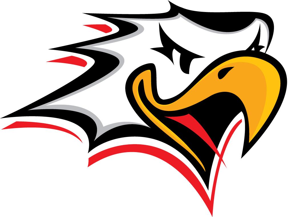 Vaasan Sport Logo Primary Logo (2000/01-2013/14) -  SportsLogos.Net