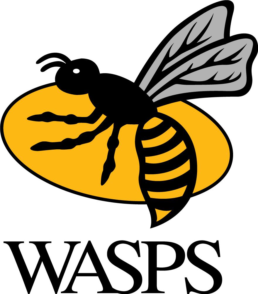 Wasps  Logo Primary Logo (1999/00-Pres) -  SportsLogos.Net