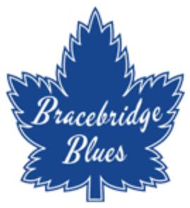 Bracebridge Blues Logo Primary Logo (2014/15-Pres) -  SportsLogos.Net