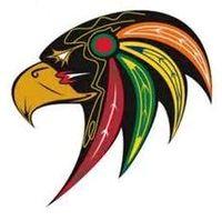 Colborne Cramahe Hawks Logo Primary Logo (2014/15-Pres) -  SportsLogos.Net