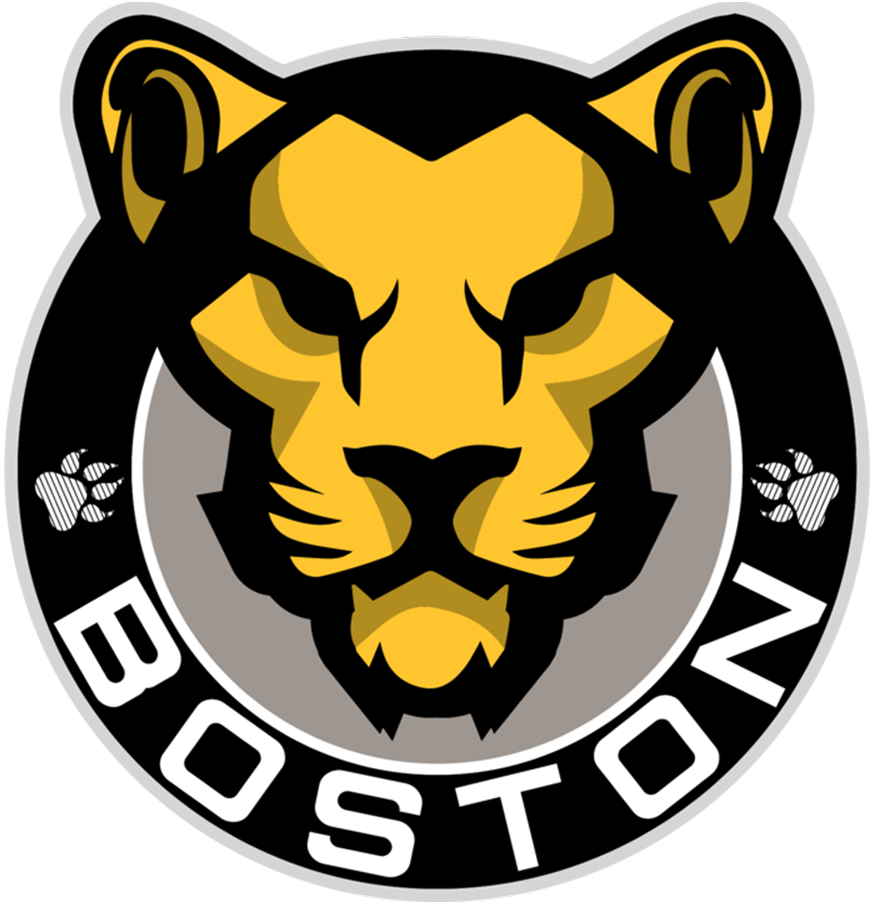 Boston Pride Logo Primary Logo (2017/18-Pres) - A lion head inside a black circle with BOSTON arched below SportsLogos.Net