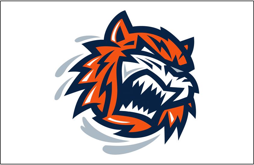 Bridgeport Sound Tigers Logo Jersey Logo (2005/06-2009/10) -  SportsLogos.Net