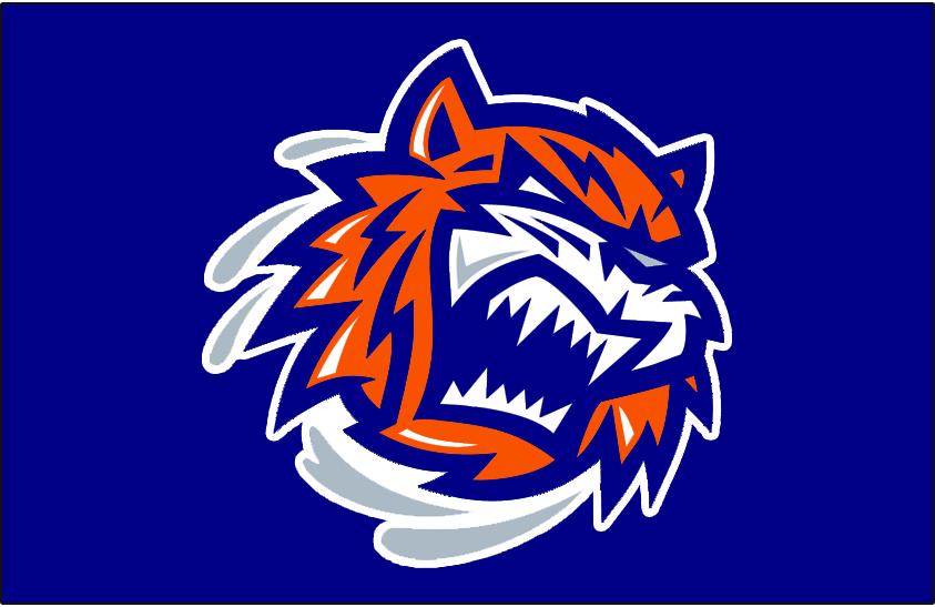 Bridgeport Sound Tigers Logo Jersey Logo (2010/11-2020/21) -  SportsLogos.Net