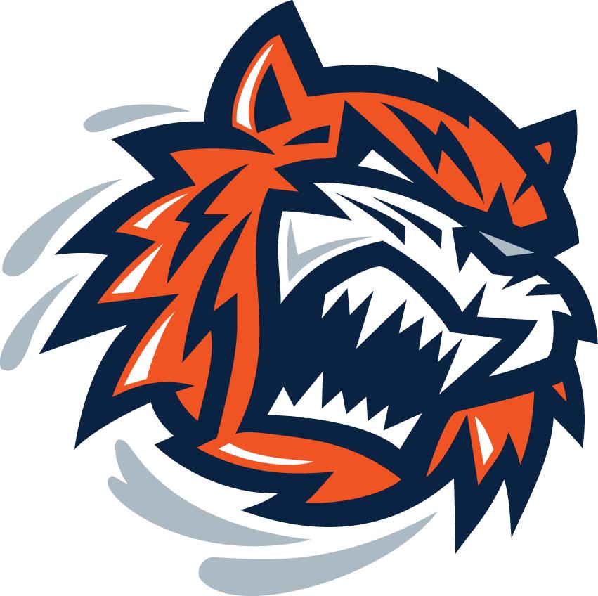 Bridgeport Sound Tigers Logo Partial Logo (2005/06-2009/10) -  SportsLogos.Net