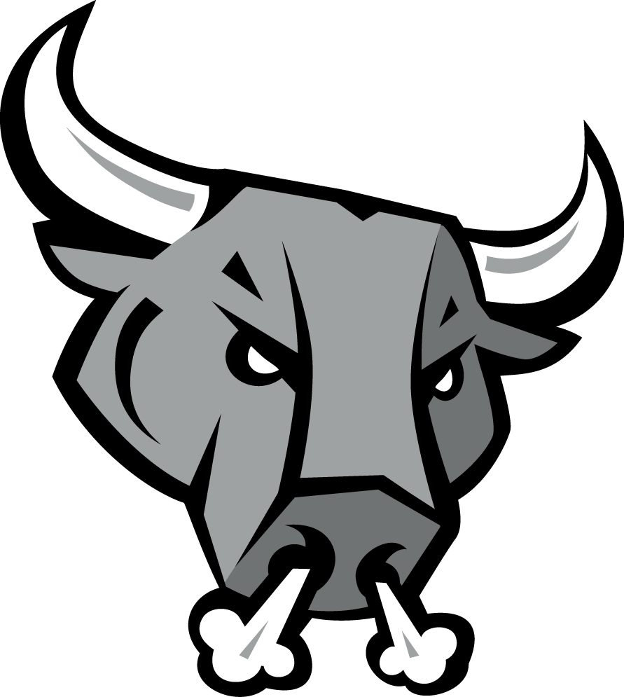 San Antonio Rampage Secondary Logo American Hockey League Ahl