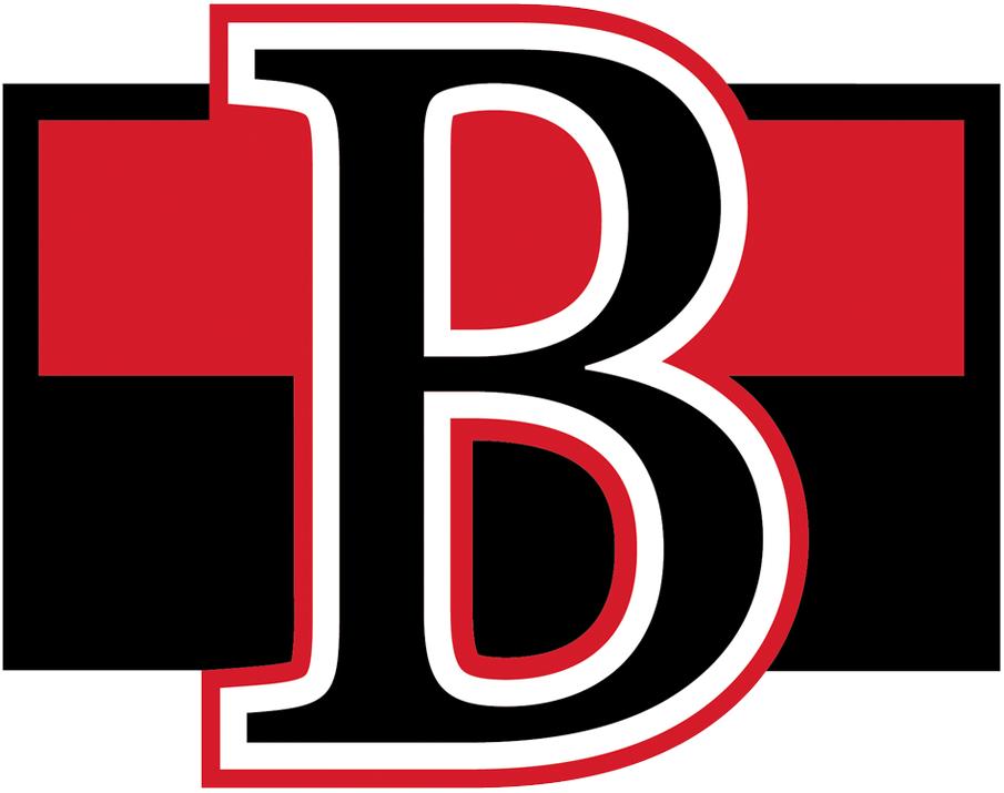Belleville  Senators Logo Primary Logo (2017/18-Pres) -  SportsLogos.Net