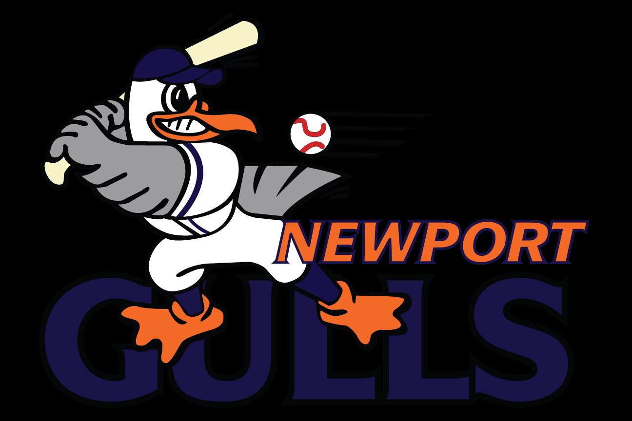 Newport Gulls Logo Primary Logo (2001-Pres) -  SportsLogos.Net