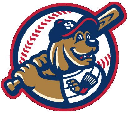 Valley Blue Sox Logo Alternate Logo (2014-Pres) -  SportsLogos.Net