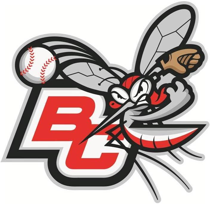 Battle Creek Bombers Logo Alternate Logo (2011-Pres) -  SportsLogos.Net
