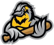 Bismarck Larks Logo Alternate Logo (2017-Pres) -  SportsLogos.Net