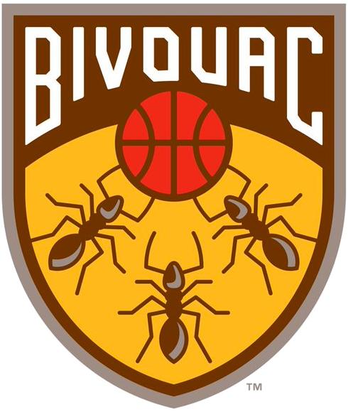 Bivouac Logo Primary Logo (2019-Pres) -  SportsLogos.Net