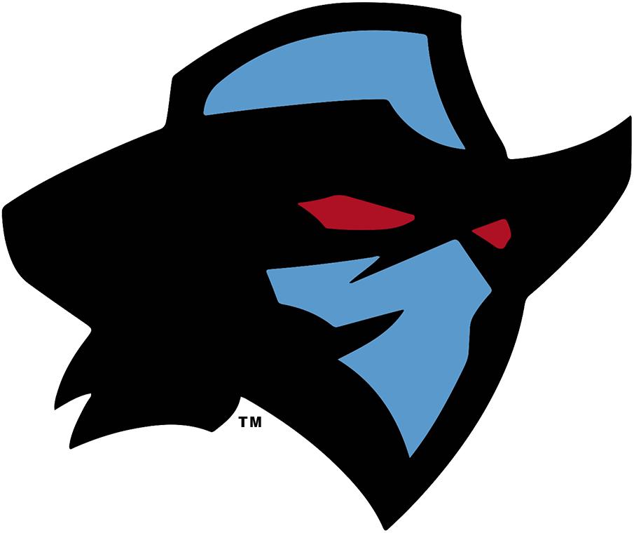 Dallas Renegades Logo Primary Logo (2020-Pres) -  SportsLogos.Net